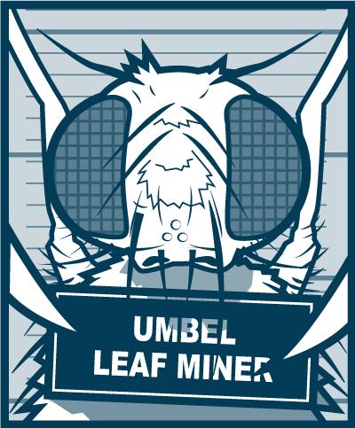 Pests-Leaf-Miner