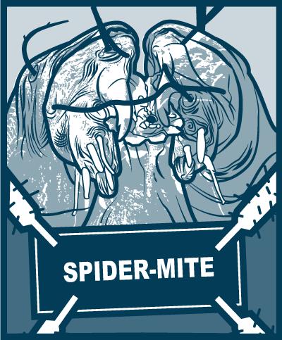 Pests - Spider-Mites