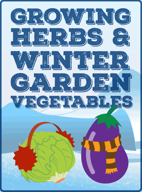 Growing Herbs and Winter Garden Vegetables
