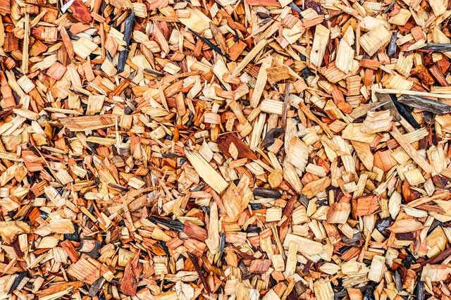 What is Mulch? (And Answers to Other Common Garden Mulch Questions)