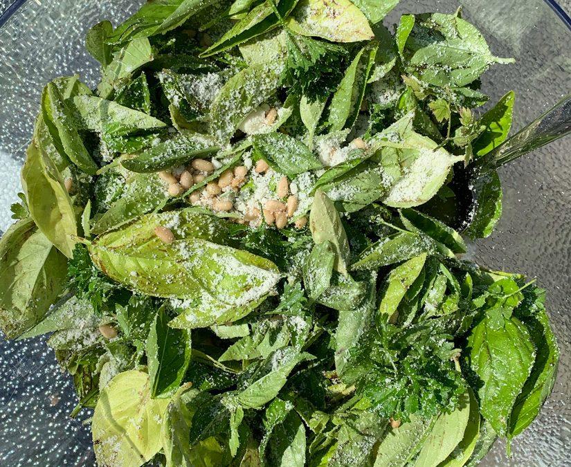 Nina's Garden Fresh Pesto